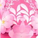 Pink Weiss Flower